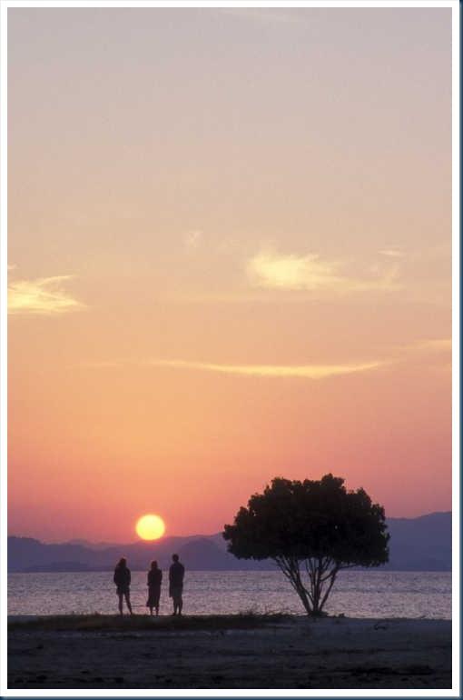 20020823_13-019_Kanawa Island_Frores