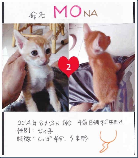2-Mona